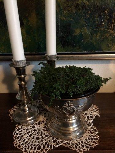 Timians flotte farve kombineret med sølv